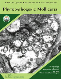 phytopatogenic-mollicutes